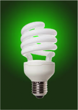 Light Bulbs With Mercury Disposal Decoratingspecial Com